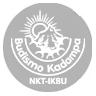 icono NKT pie web